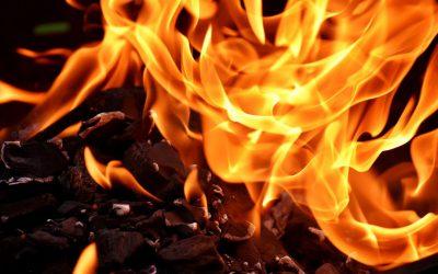 Vilken ved brinner vackrast?